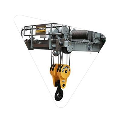 Standard Electric Hoist